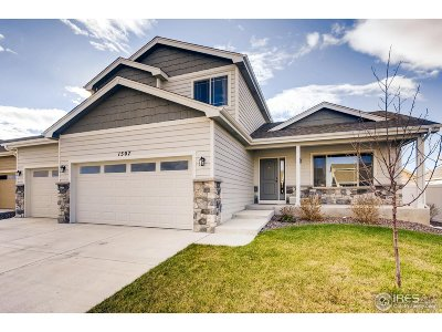 Berthoud Single Family Home For Sale: 1507 Alpine Ave