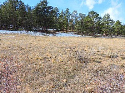 Estes Park Residential Lots & Land Active-Backup: Cherokee Ct