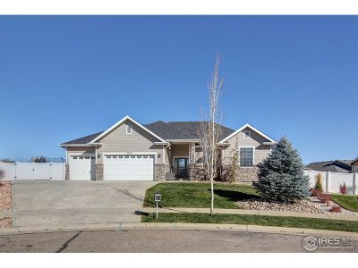 Greeley Single Family Home For Sale: 3210 Laguna Ct