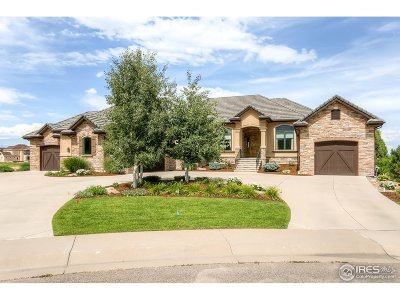 Greeley Single Family Home For Sale: 32784 Eagleview Dr