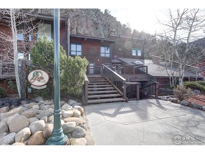 Estes Park CO Multi Family Home For Sale: $210,000