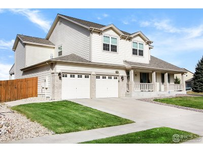 Fort Collins Single Family Home For Sale: 702 Prichett Ct