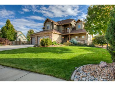 Fort Collins Single Family Home For Sale: 837 Vista Grande Cir