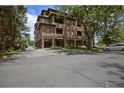 Fort Collins Condo/Townhouse For Sale: 210 W Magnolia St #410