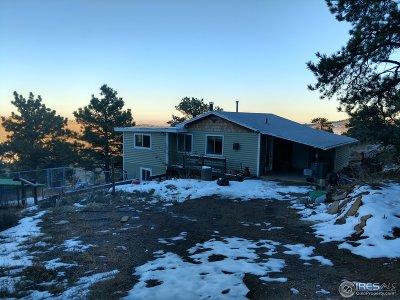 Berthoud Single Family Home For Sale: 212 Gunn Ave