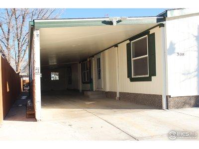 Dacono Single Family Home For Sale: 308 Glen Ayre St