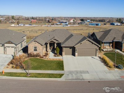 Loveland Single Family Home For Sale: 3565 Angora Dr