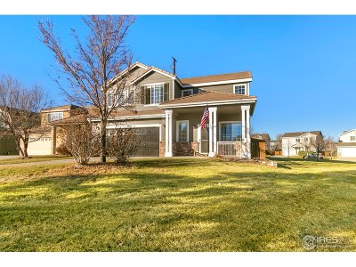 Fort Collins Single Family Home For Sale: 3938 Gardenwall Ct