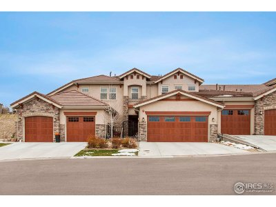Superior Condo/Townhouse For Sale: 2982 Casalon Cir
