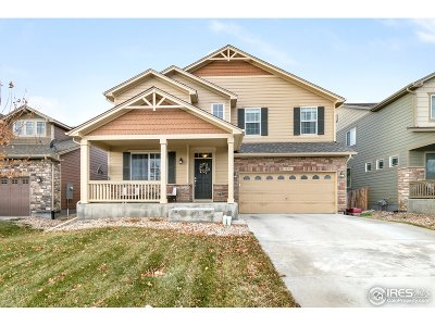 Fort Collins Single Family Home For Sale: 833 Campfire Dr
