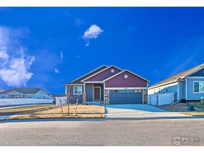 Berthoud Single Family Home For Sale: 2453 Tabor St