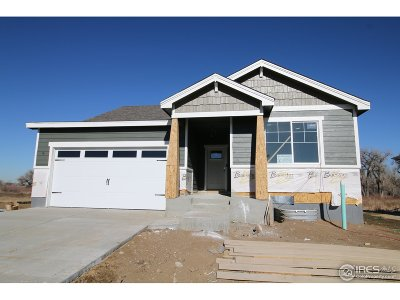 Greeley Single Family Home For Sale: 8125 River Run Dr