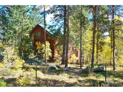 Nederland Single Family Home For Sale: 240 Pinon Way