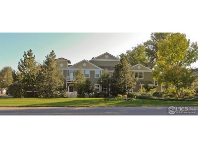 Longmont Condo/Townhouse For Sale: 4501 Nelson Rd #2503