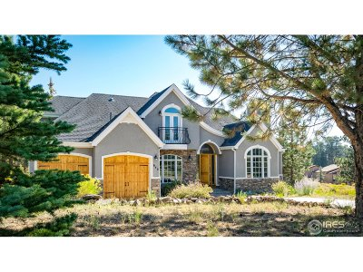 Estes Park Single Family Home For Sale: 640 Findley Ct