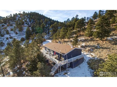 Estes Park Single Family Home For Sale: 1624 Prospect Mountain Dr