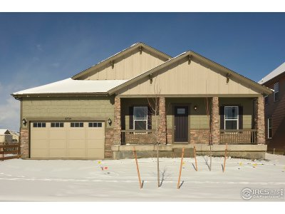 Longmont Single Family Home For Sale: 4734 Summerlin Pl