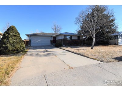 Windsor Single Family Home For Sale: 604 Pine Mountain Ct