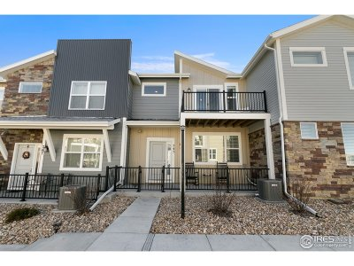 Longmont Condo/Townhouse For Sale: 745 Robert St