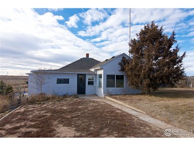 Peetz Single Family Home For Sale: 35361 County Road 35