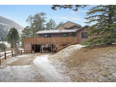 Estes Park Single Family Home For Sale: 2848 Fall River Rd