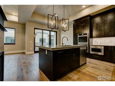 Fort Collins Condo/Townhouse For Sale: 302 N Meldrum St #305