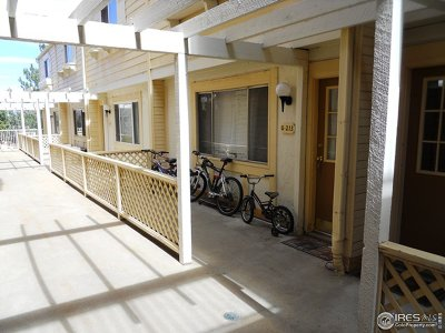 Boulder Condo/Townhouse For Sale: 3161 Madison Ave #213
