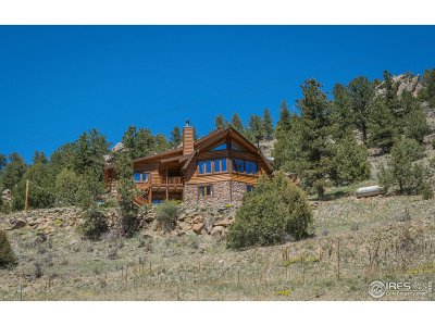 Larimer County Single Family Home For Sale: 1158 Dunraven Glade Rd