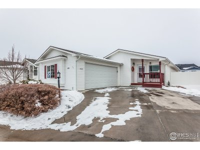 Fort Collins Single Family Home For Sale: 4521 Quest Dr