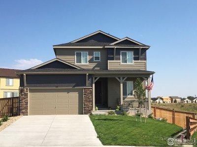 Loveland Single Family Home For Sale: 116 Vela Ct