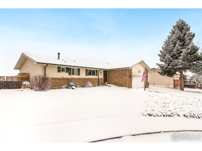 Loveland Single Family Home For Sale: 1738 Judith Ct