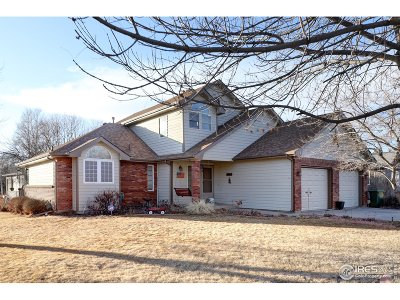 Loveland Single Family Home For Sale: 1107 Milner Ave