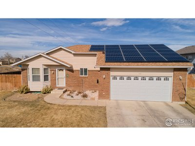 Single Family Home For Sale: 401 E 20th St