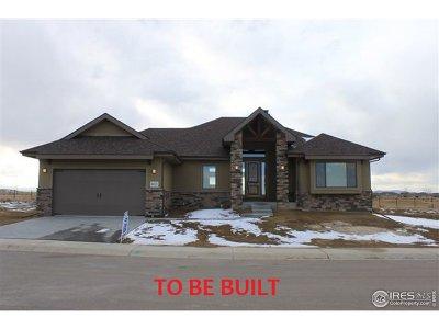 Berthoud Single Family Home For Sale: 2806 Heron Lakes Pkwy