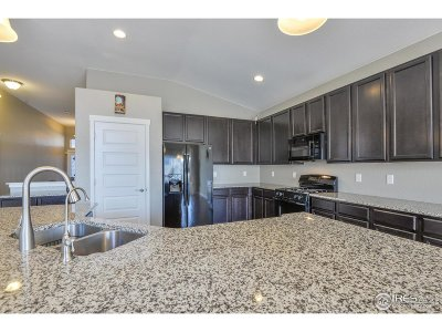 Loveland Single Family Home For Sale: 3156 Zodiac Pl