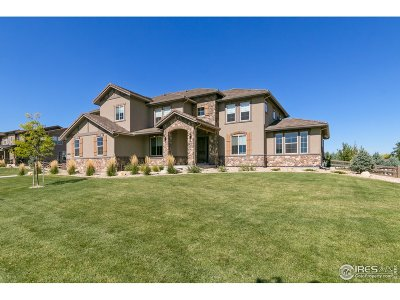 Broomfield Single Family Home For Sale: 1085 Maddox Ct