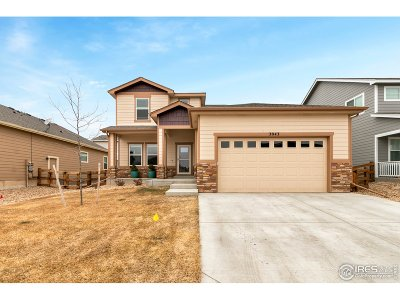 Loveland Single Family Home For Sale: 3043 Magnetic Dr