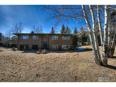 Estes Park Condo/Townhouse For Sale: 1111 Fairway Club Cir #1