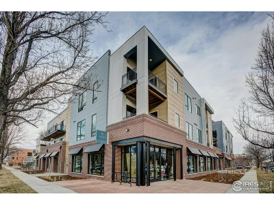 Fort Collins Condo/Townhouse For Sale: 302 N Meldrum St #306