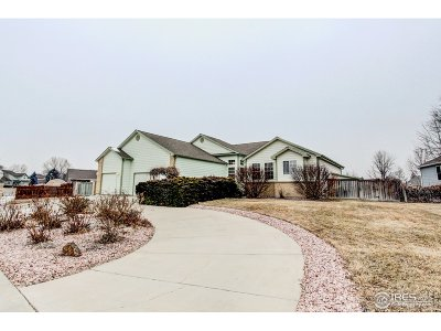 Windsor Single Family Home For Sale: 1401 Redwood Ct