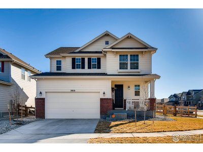 Longmont Single Family Home For Sale: 2080 Sicily Cir
