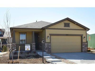 Larimer County Single Family Home For Sale: 2891 Cub Lake Dr