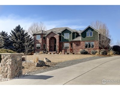 Niwot Single Family Home For Sale: 7719 Crestview Ln
