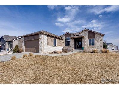 Windsor Single Family Home For Sale: 324 Rock Bridge Dr