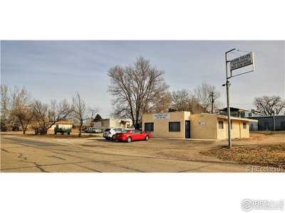Hudson Residential Lots & Land For Sale: 600 Dahlia St