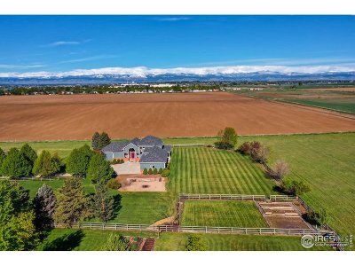 Longmont Single Family Home For Sale: 1873 Blue Mountain Rd
