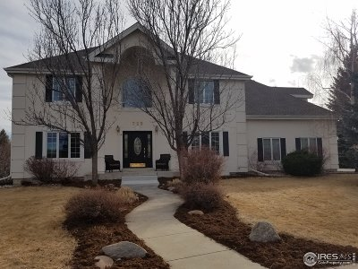 Fort Collins Single Family Home For Sale: 725 Blue Teal Dr
