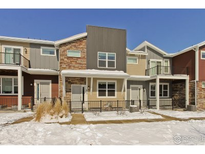 Longmont Condo/Townhouse For Sale: 649 Robert St