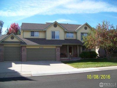 Single Family Home Active-Backup: 519 Idalia Ct