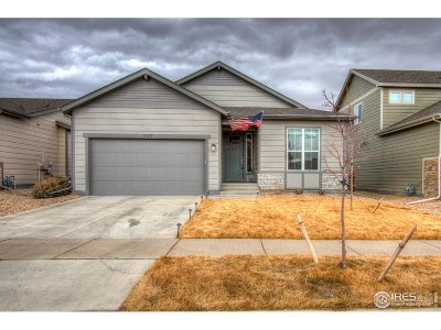 Greeley Single Family Home For Sale: 10219 W 11th St